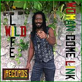 Play & Download Woman Come Link by Wild Life | Napster
