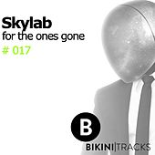 For the Ones Gone by SkyLab