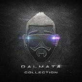 Dalmata Collection by Dalmata