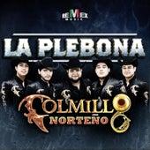 Play & Download La Plebona - Single by Colmillo Norteno | Napster