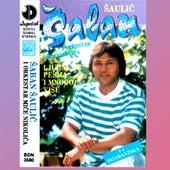 Ljubav je pesma i mnogo vise by Saban Saulic