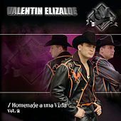 Play & Download Homenaje A Una Vida Vol. 2 by Valentin Elizalde | Napster