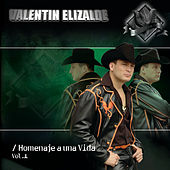 Play & Download Homenaje A Una Vida Vol 1 by Valentin Elizalde | Napster