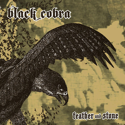 Feather And Stone by Black Cobra