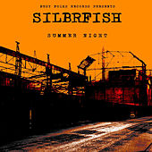 Play & Download Summer Night by Silbrfish | Napster