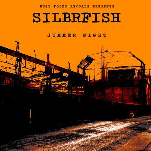 Summer Night by Silbrfish