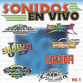 Play & Download Sonidos En Vivo by Various Artists | Napster