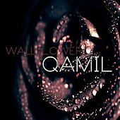 Play & Download Wallflower by Qamil | Napster