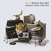 What's Your 20? Essential Tracks 1994 - 2014 by Wilco