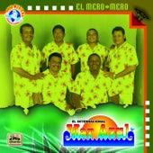 Play & Download El Mero Mero by Conjunto Mar Azul | Napster
