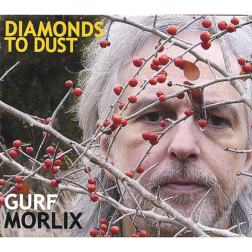 Diamonds to Dust by Gurf Morlix