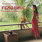 Play & Download Feng Shui: Soothing Relaxing Music by Gomer Edwin Evans | Napster