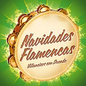 Play & Download Navidades Flamencas. Villancicos con Duende by Various Artists | Napster
