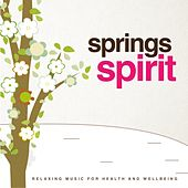 Play & Download Springs Spirit (Relaxing Music for Health and Wellbeing) by Jeffery Smith | Napster