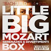 Play & Download Little Big Mozart Serenades & Divertimenti Box by Various Artists | Napster