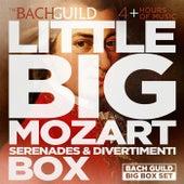 Little Big Mozart Serenades & Divertimenti Box by Various Artists