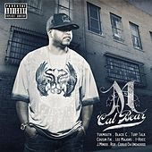 Play & Download Cal Bear by M Dash | Napster