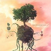 Play & Download Natural Wonders by Wilderness | Napster
