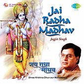 Play & Download Jai Radha Madhav by Jagjit Singh | Napster