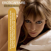 Erotic Affairs, Vol. 10 - Sexy Lounge Tracks for Erotic Moments by Various Artists