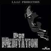 High Meditation by Various Artists