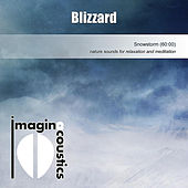Play & Download Blizzard by Imaginacoustics | Napster