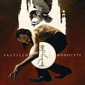 Monocyte: The Lapis Coil by Saltillo