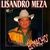 Play & Download El Macho by Lisandro Meza | Napster