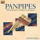 Play & Download Panpipes from Bolivia, Peru & Ecuador by Aconcagua | Napster
