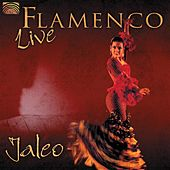 Play & Download Flamenco Live by Jaleo | Napster