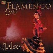 Flamenco Live by Jaleo