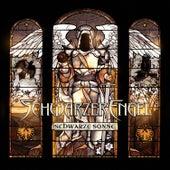 Play & Download Schwarze Sonne by Schwarzer Engel | Napster