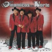 Play & Download Carino Prohibido by Los Dinamicos Del Norte | Napster