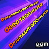 Play & Download Psychedelic Hard House, Deep Tech House & Progressive Goa Trance by Various Artists | Napster
