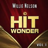 Hit Wonder: Willie Nelson, Vol. 1 von Willie Nelson
