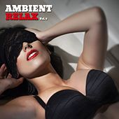 Ambient Relax, Vol. 3 by Various Artists