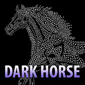 Dark Horse (Tribute to Katy Perry & Juicy J) by Next
