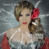 Pedazos De Vidrio by Erika Vidrio