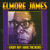 Play & Download Everyday I Have The Blues by Elmore James | Napster