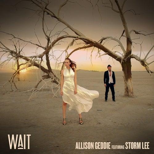 Play & Download Wait by Allison Geddie | Napster