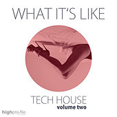 What It's Like - Tech House, Vol. 02 by Various Artists