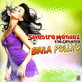Play & Download Baila Pollito by Silvestre Mendez | Napster