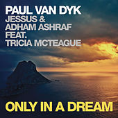 Play & Download Only In A Dream by Paul Van Dyk | Napster