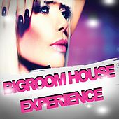 Bigroom House Experience by Various Artists