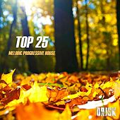 Play & Download Melodic Progressive House - Top 25 by Various Artists | Napster