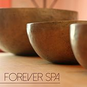 Play & Download Forever Spa - Relaxing Spa Music & Soothing Songs for Relaxing Moments, Spas and Beauty Centers by Spa Music Masters | Napster