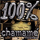 Play & Download 100 % Chamamé - Vol. 2 by Various Artists | Napster