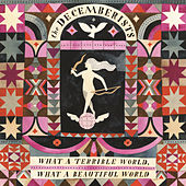 Lake Song by The Decemberists
