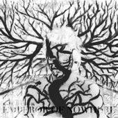 Emperor of Nowhere by Kate Havnevik