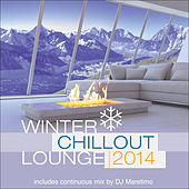 Play & Download Winter Chillout Lounge 2014 by Various Artists | Napster